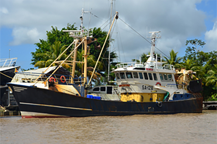 Foto locatie Suriname